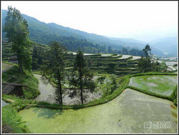 堂安侗寨:人类疲惫心灵的最后家园