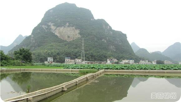 柳州周边游:休闲骑行乡间路