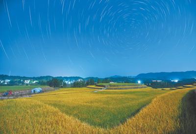 寻访万年稻源