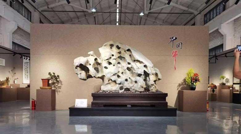 第十一届柳州国际奇石节开幕 700多件精品奇石亮相龙城